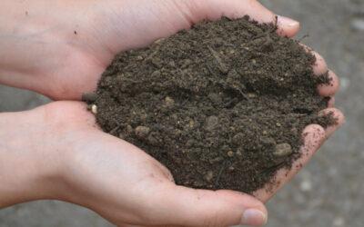 Nouveau produit : Terre végétale amendée