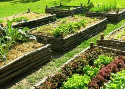terre végétale amendée